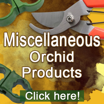 Recommended orchid products miscellaneous