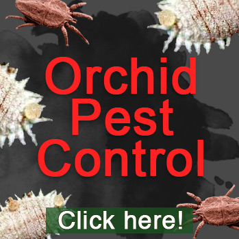 Recommended Orchid Anti-Pest products