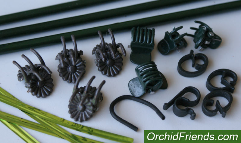Staking and clips for orchid flower spikes