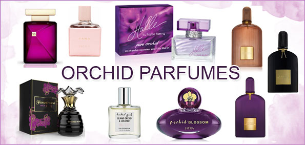 Orchid Fragrance